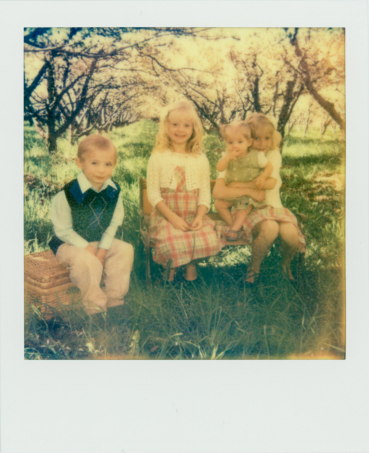 polaroid photograph of children in an orchard