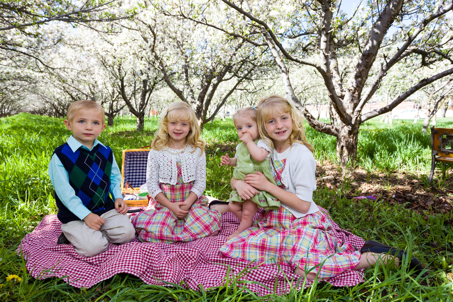 Sitting for a picnic in the orchard