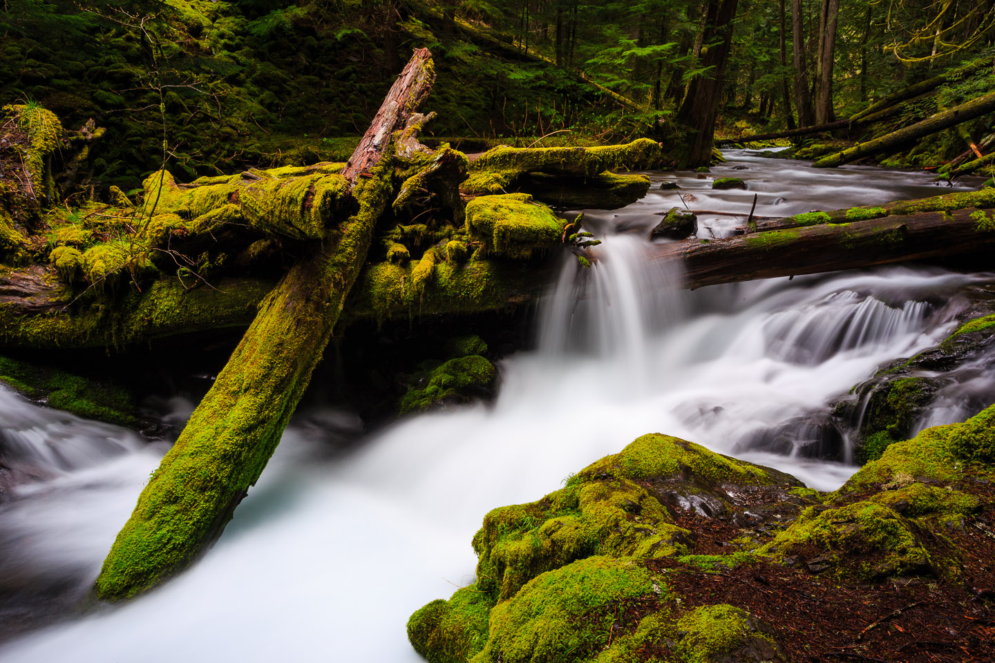 Waterfalls in Panther Creek in Washington