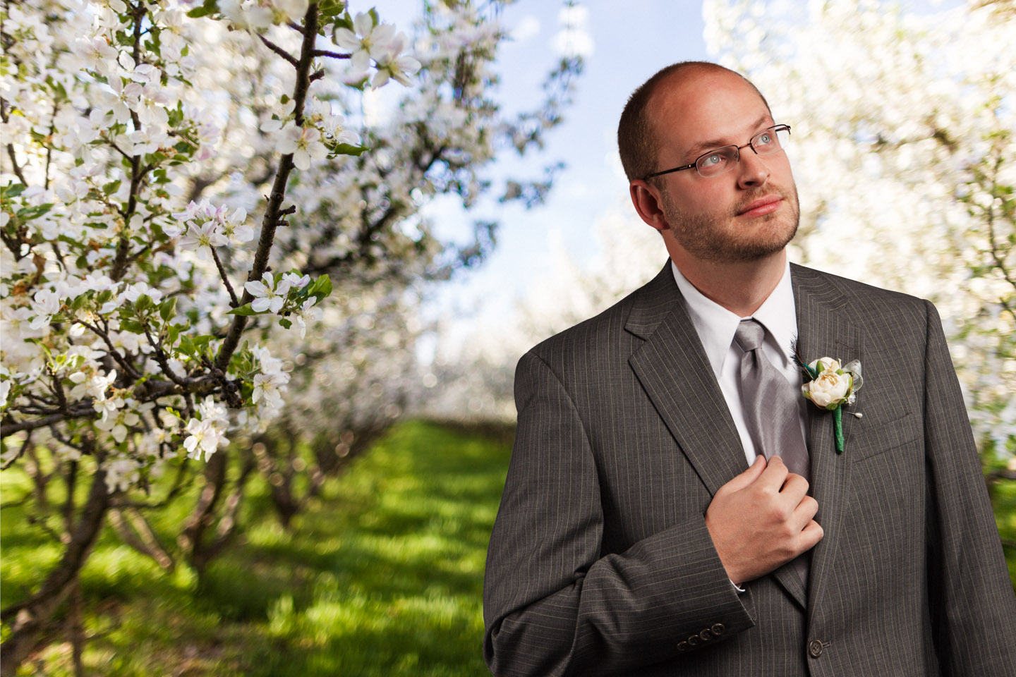 A Groom surrounded by apple blossoms