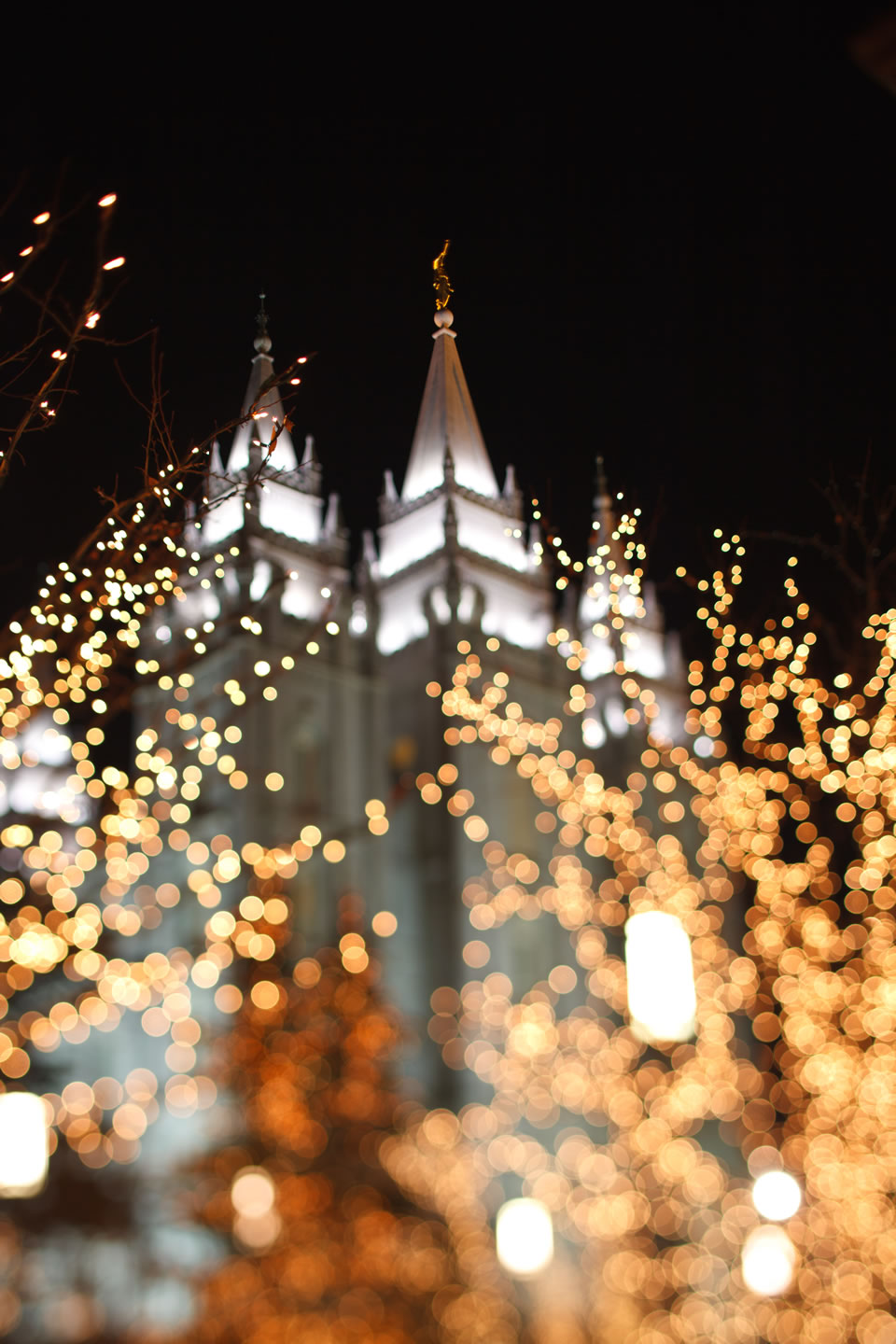 Salt Lake Temple surrounded by the glow of Christmas lights