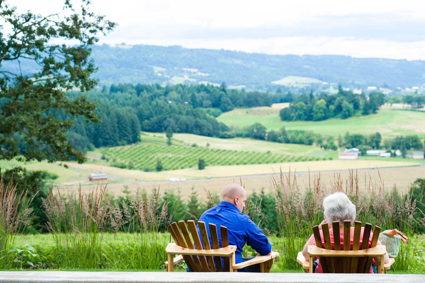 Folks enjoy the view of Oregon's wine country and vineyard at Penner Ash