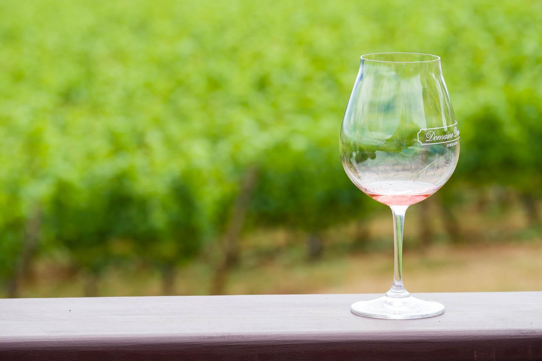Wine glass and the vineyard