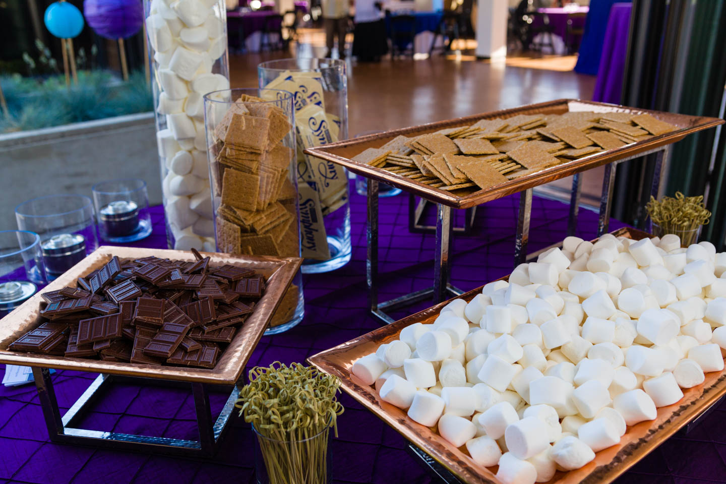 S'mores bar for Pride Party