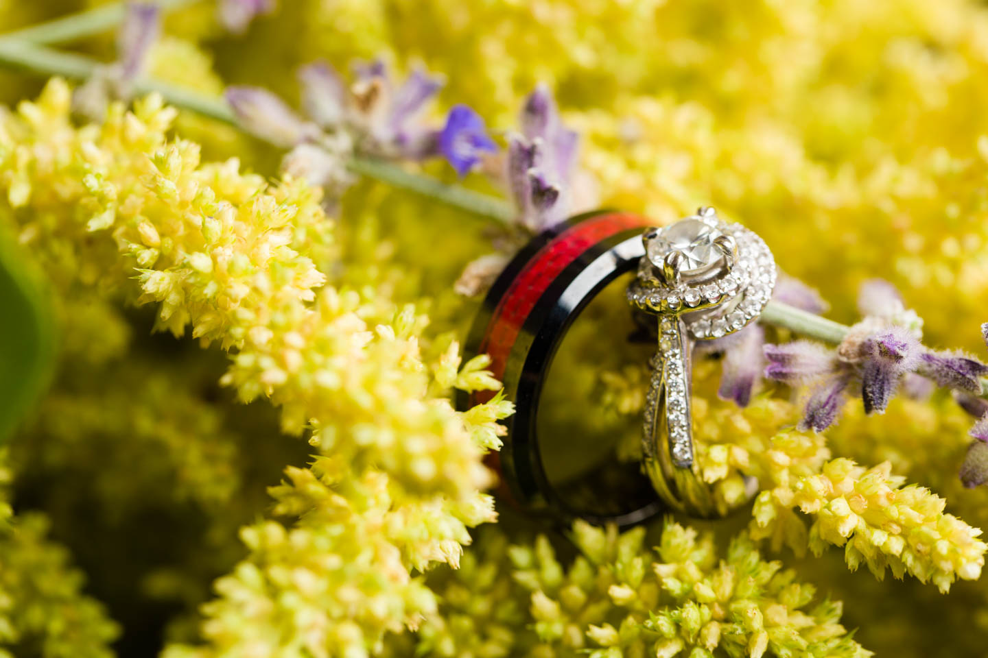 Wedding Rings on a sea of flowers