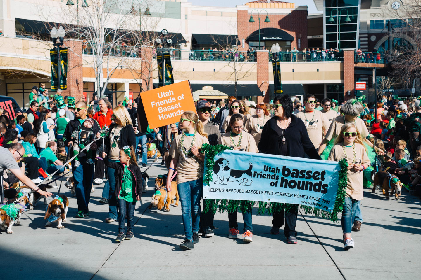 Utah Friends of Basset Hounds and the Wasatch Waddle