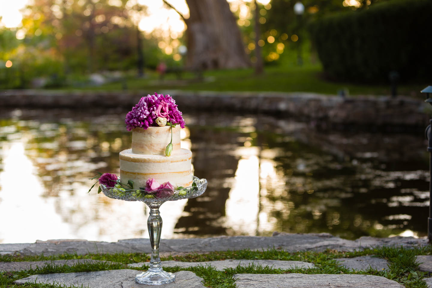 Wedding cake by duck pond