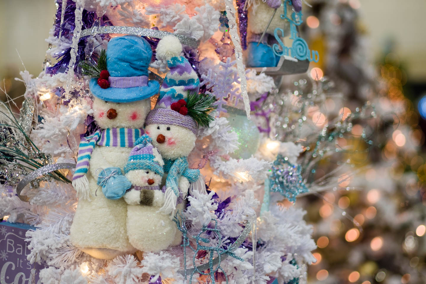 Christmas trees and decorations at the Festival of Trees